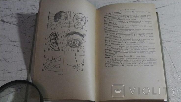 Справочник криминалиста. (Описание предметов), фото №4