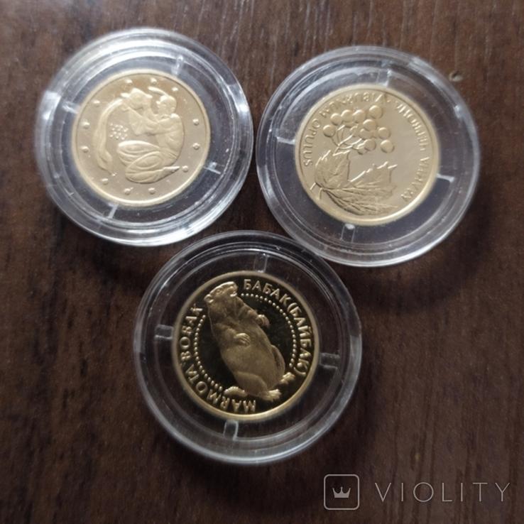 2 гривны.Золото.3 штуки., фото №5