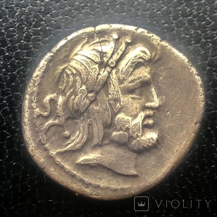 Денарій, 80 р до РХ, Gens Procilia, фото №4