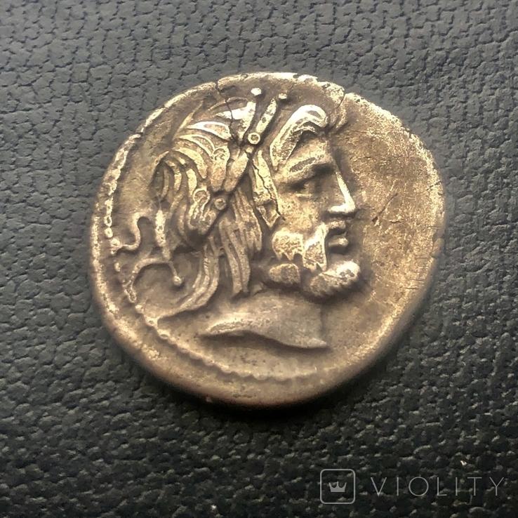 Денарій, 80 р до РХ, Gens Procilia, фото №2