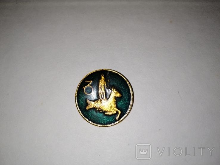 Пуговица со знаком зодиака, фото №2