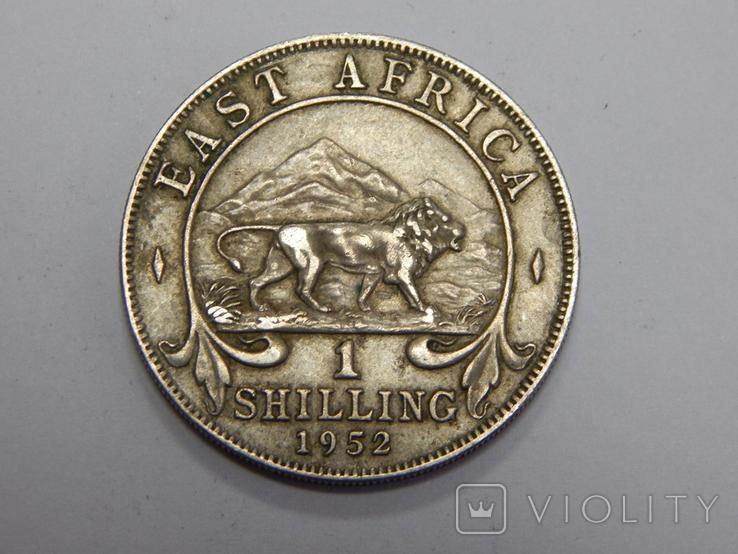1 шиллинг, 1952 г Британская Африка, фото №2
