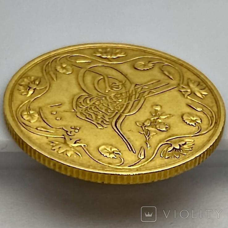100 пиастров. Османский Египет. Abdul Hamid II 1293/12 AH  1876. (вес 8,49 г), фото №12
