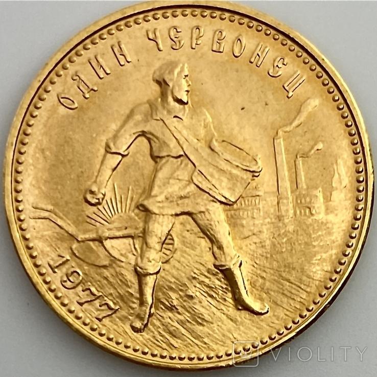 Один Червонец Сеятель. 1977. ЛМД. РСФСР (золото 900, вес 8,58 г), фото №2