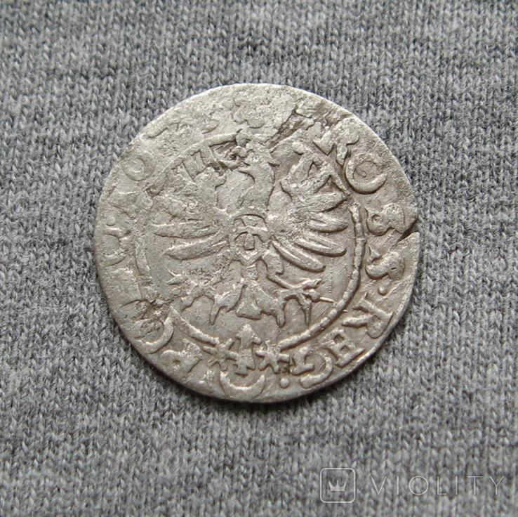 Коронный грош 16Z5 года. Сиг. ІІІ Ваза., фото №4