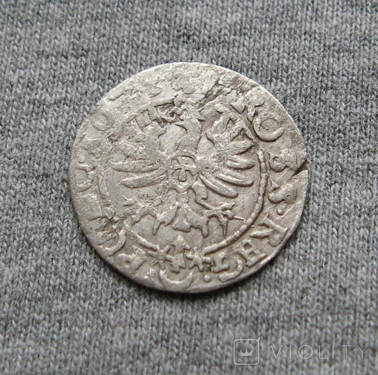 Коронный грош 16Z5 года. Сиг. ІІІ Ваза., фото №5