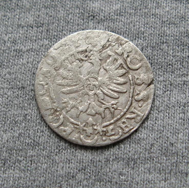 Коронный грош 16Z5 года. Сиг. ІІІ Ваза., фото №7