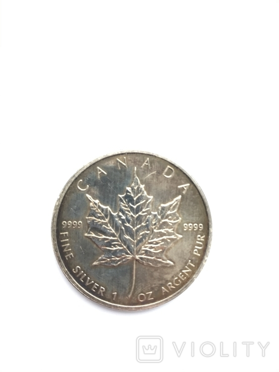 5 долларов 2007 Канада. Серебро. Унция. 999 проба, фото №6