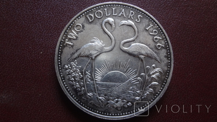 2 доллара 1966 Багамы 29.8 г серебро (8.4.2), фото №2