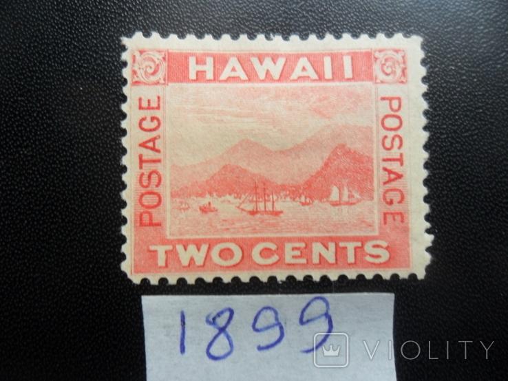 Гавайские острова. Классика. 1889 г. Корабли. гавань МН, фото №2
