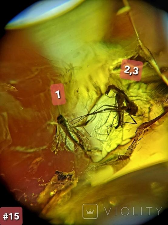 Янтарный кулон с инклюзами #15, фото №6