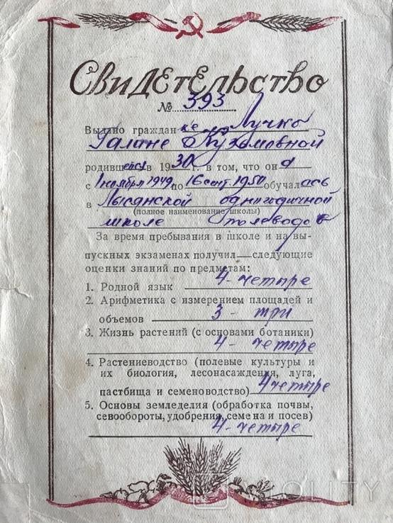 1949 Свидетельство Сельское Хозяйство СССР, фото №6