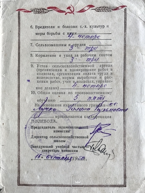 1949 Свидетельство Сельское Хозяйство СССР, фото №7