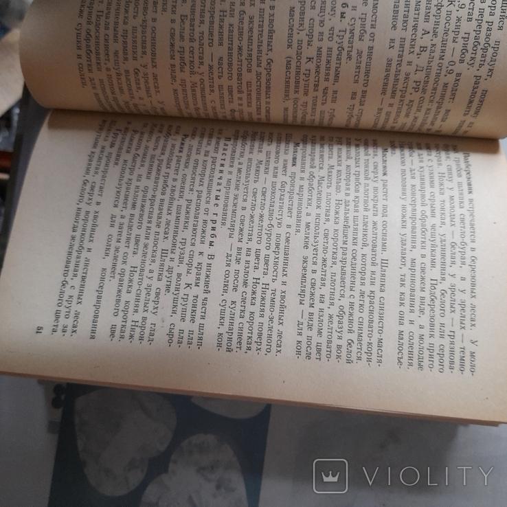 """Кравцов """"Советы молодым хозяйкам"""" 1976р., фото №4"""