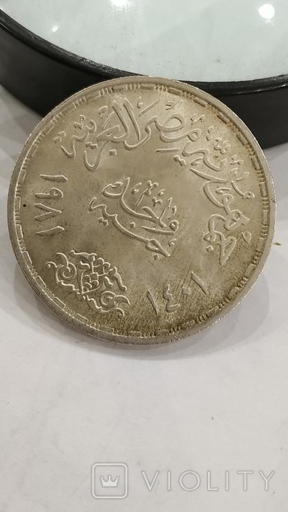 Египет. 1 фунт 1981г. Всемирный день продовольствия. Серебро., фото №5