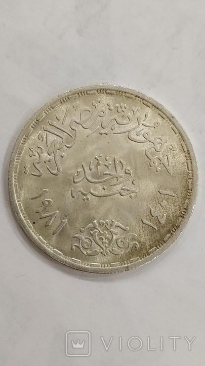 Египет. 1 фунт 1981г. Всемирный день продовольствия. Серебро., фото №6