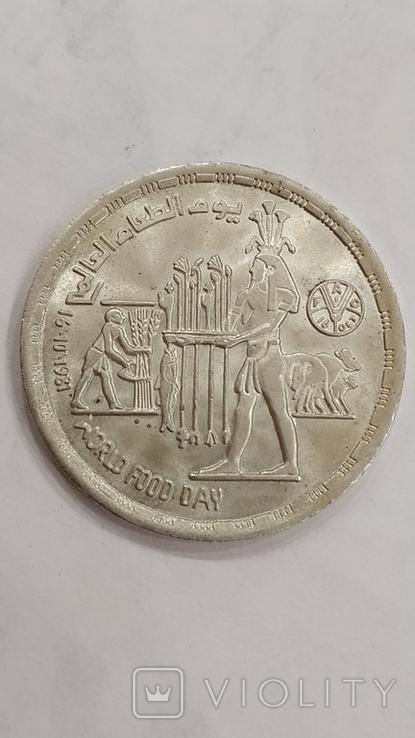 Египет. 1 фунт 1981г. Всемирный день продовольствия. Серебро., фото №7
