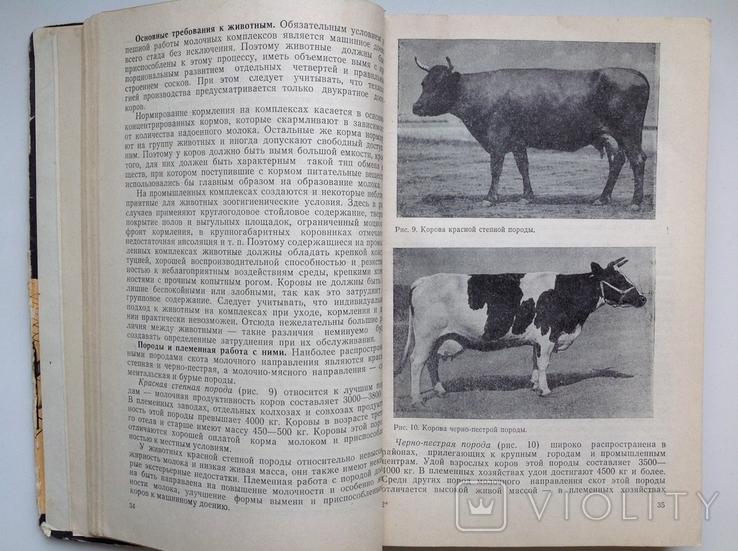 1981 Основы промышленной технологии производства продуктов животноводства, фото №9