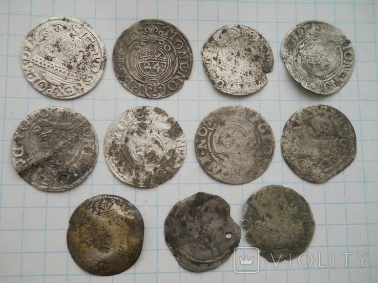 Монеты Польши, фото №2