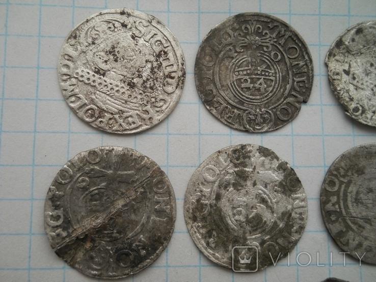 Монеты Польши, фото №3