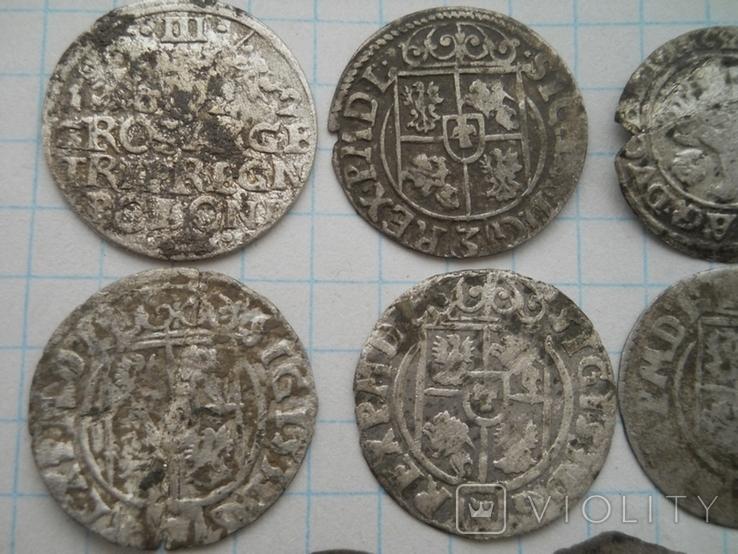 Монеты Польши, фото №7