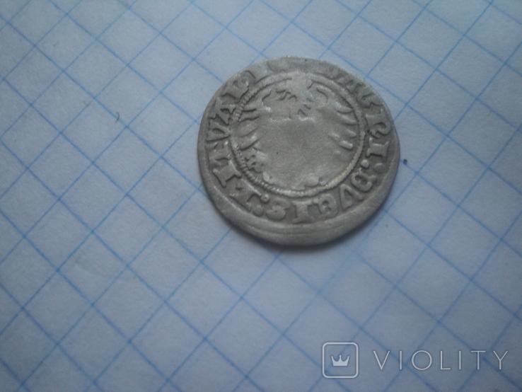 Полугрош 1511, фото №4