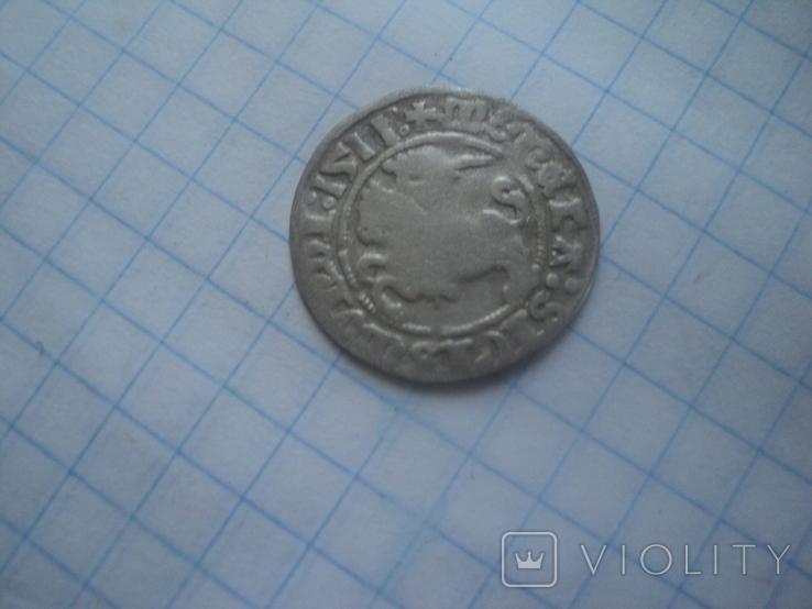Полугрош 1511, фото №5