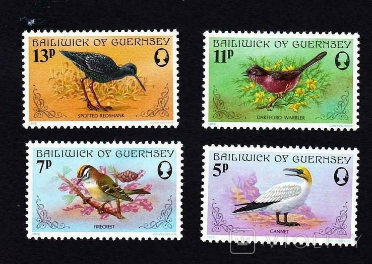Гернси 1978 птицы
