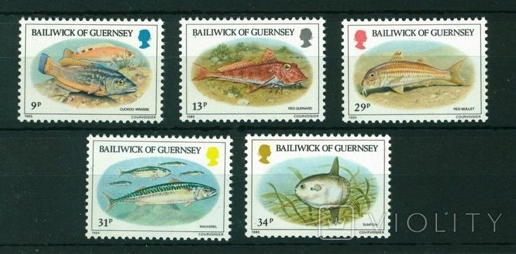 Гернси 1985 рыбы