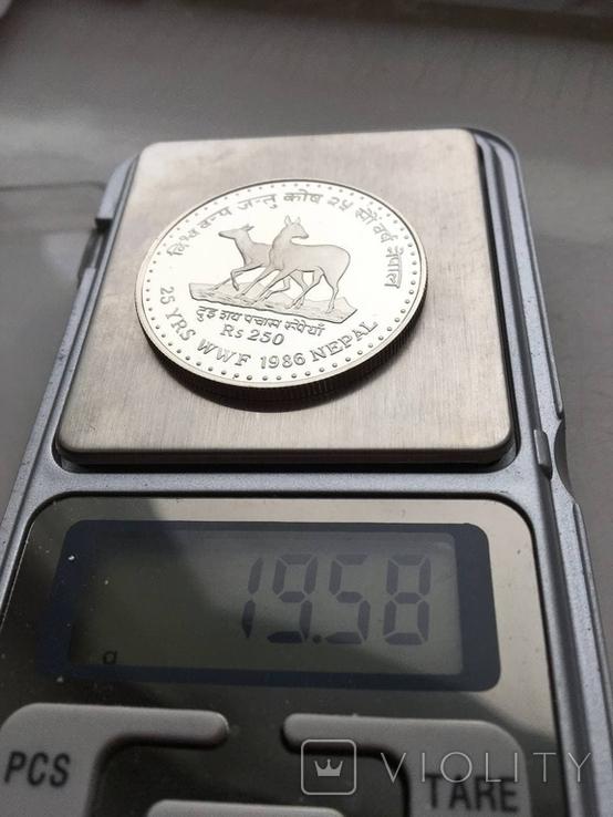 250 рупий Непал серебро 1986, фото №3