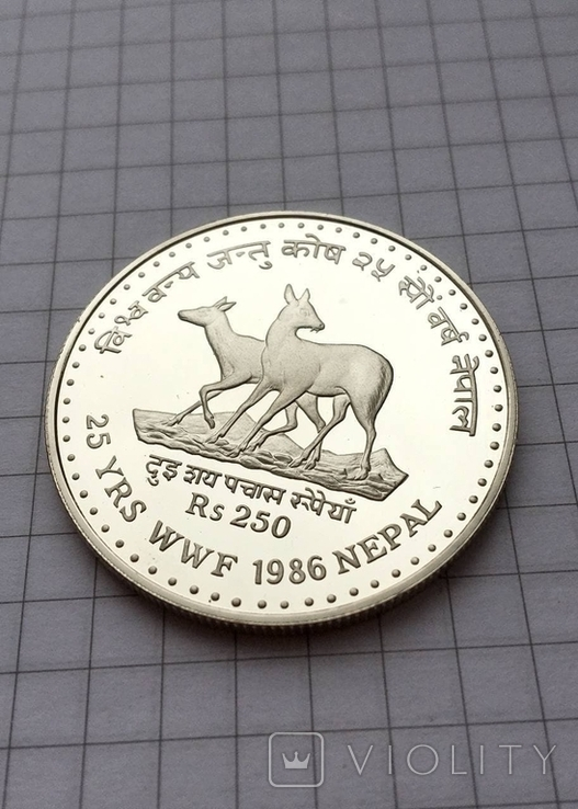 250 рупий Непал серебро 1986, фото №2