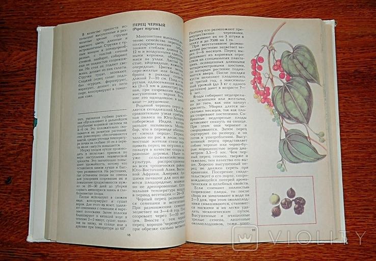 Пряности и специи, 1995 г., фото №5