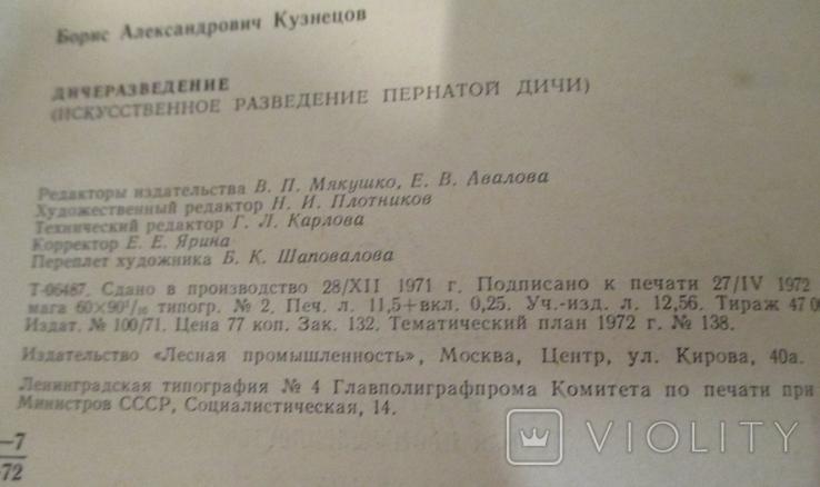 Дичеразведение. Кузнецов, фото №5