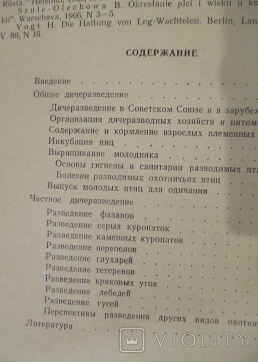Дичеразведение. Кузнецов, фото №6