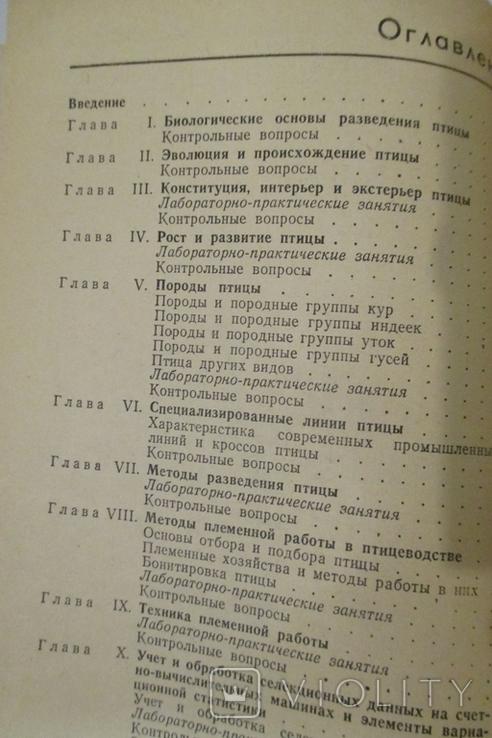 Разведение и племенное дело в птицеводстве, фото №4