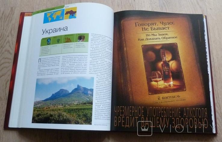 Бренди, мировая энциклопедия издательства Антона Жигульского, фото №7