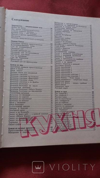 Т.Шпаковская. Кухня микроволновой печи.1994г., фото №3