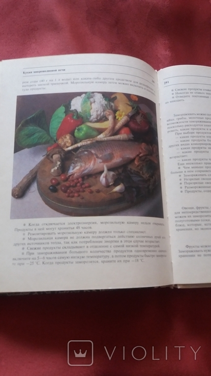 Т.Шпаковская. Кухня микроволновой печи.1994г., фото №11