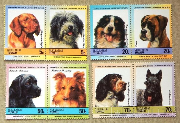 """Серія """" Фауна. Собаки """" Тувалу. 1985р. MNH., фото №2"""