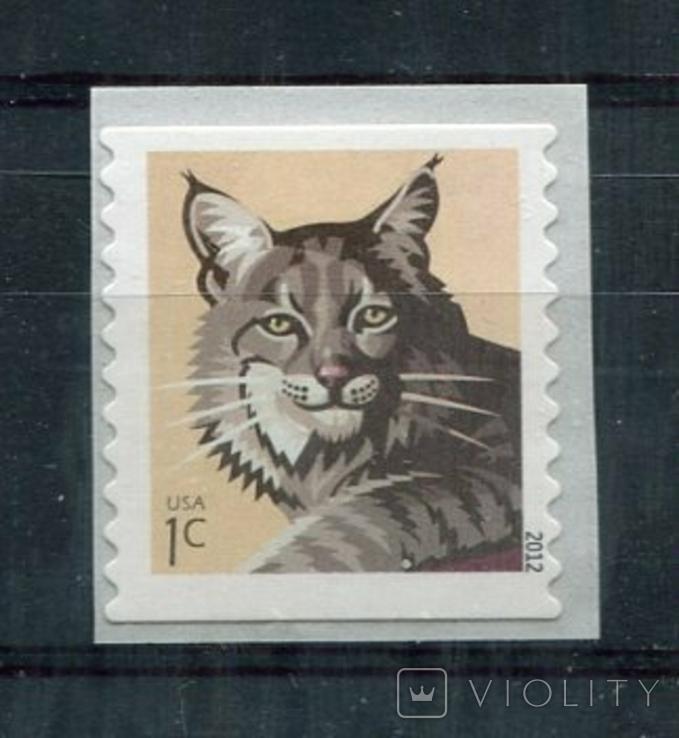 Марка MNH США животные фауна рысь кошки