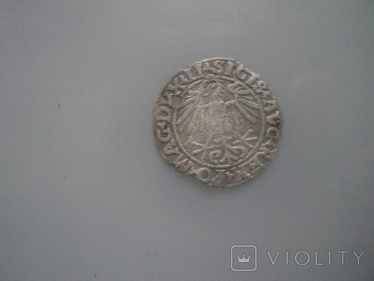 Полугрош 1550, фото №6