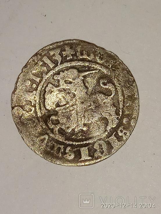 Полугрош Литовский 1513 год, фото №2