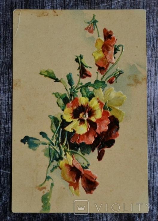 Старинная открытка: Цветы. Фиалки. Открытое письмо. Германия., фото №2