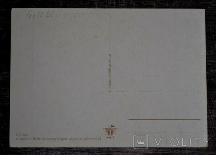 Винтажная открытка Munchener Bildkunstverlog August Lengauer. Цветы. Германия., фото №3