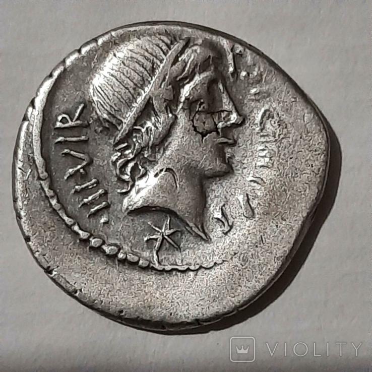 Римская республика. К. Сициний и К. Копоний, 49 г. до н. Э., фото №3
