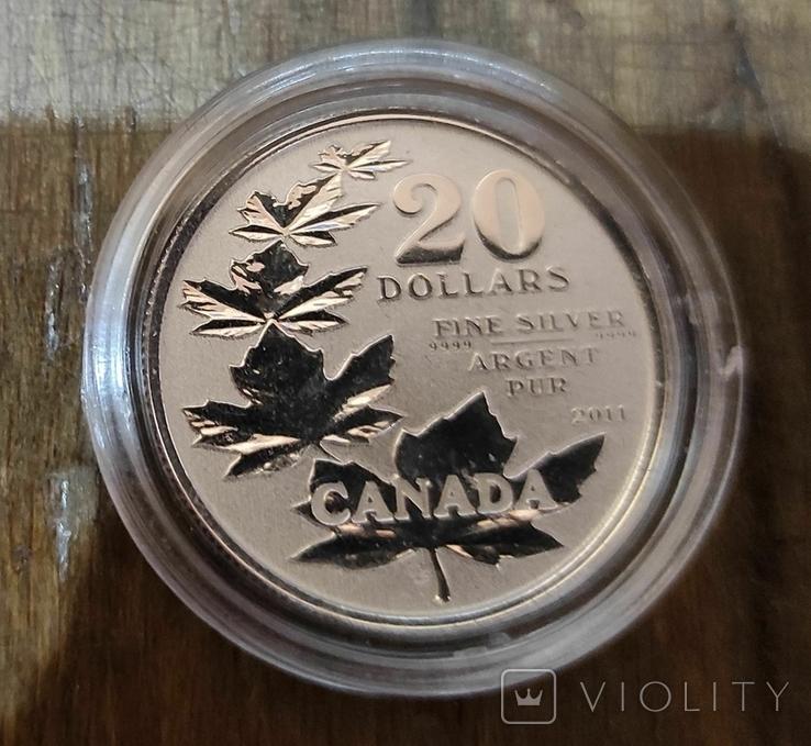 Канада 20 долларов 2011 г. Серебро. Фото через капсулу. Кленовые листья, фото №2