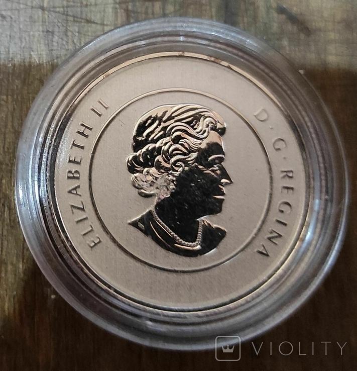 Канада 20 долларов 2011 г. Серебро. Фото через капсулу. Кленовые листья, фото №3