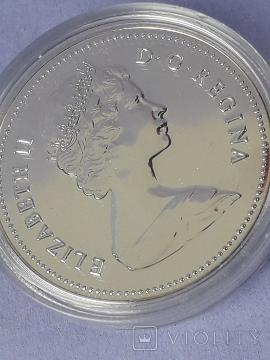 1 доллар, Канада, 1980 год, 100 лет Арктическим территориям, серебро, фото №6