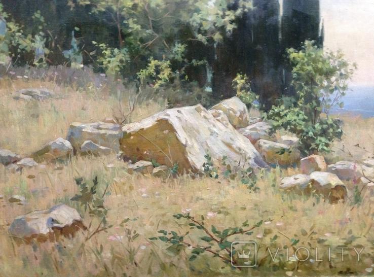 Старая картина Крымский пейзаж-Июль 1966 г. Калмыков Ф. Б.(1932-1967), фото №11