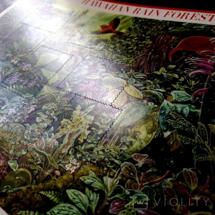 США 2010 - Гавайский лес - серия Природа Америки - 44с, фото №3
